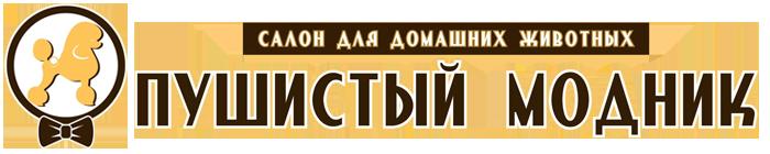 «Пушистый модник». Стрижки кошек и собак в Йошкар-Оле